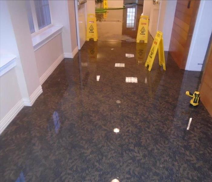 Standing water in a Hallway