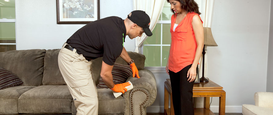 Greenwood, SC carpet upholstery cleaning
